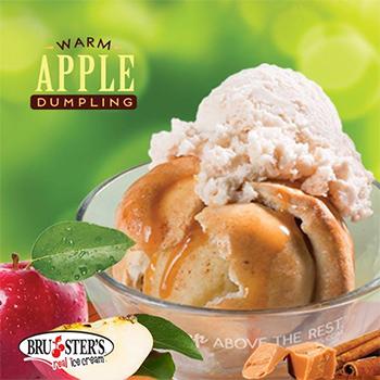 Bruster's ice cream coupons